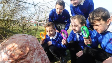 Boxted St Peter's Primary School pupils discover a dinosaur egg in the school grounds. Year six pupi