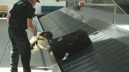 Drugs search on a baggage carousel at Stansted Airport. Library image.