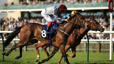 Action from Newmarket: PA Wire