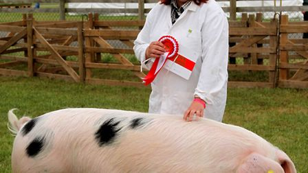 Teresa Cook with her Gloucester Old Spot, Supreme Champion at the Suffolk Show