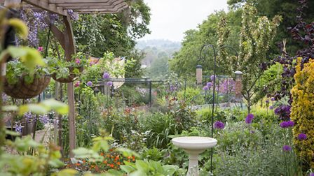Hazel Buchanan's garden at Boxford - not taken this spring! 'The garden is just a vehicle for observ