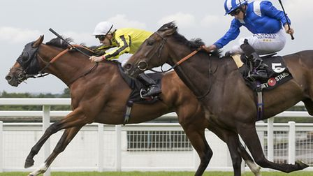 Franklin D, left, won at Newmarket on Saturday