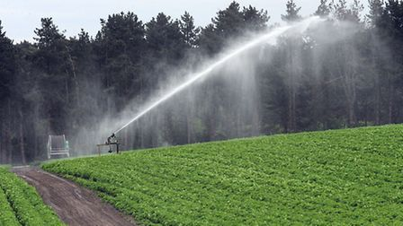 ESWAG and Suffolk Agricultural Association hosted a conference on water.