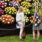 Hampton Court Flower Show opened it's doors to the press on Monday July 4th.