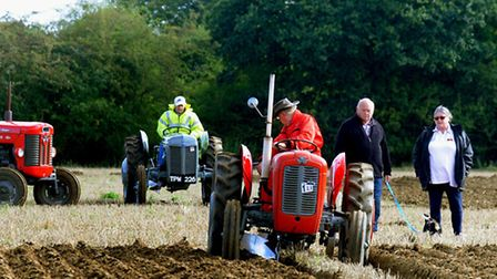 On the straight and narrow at Fornham St Martin on Sunday during the furrow drawing ploughing compet