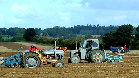 The ploughing competition at Hall Farm