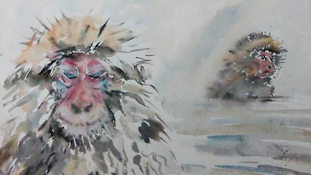 Snow monkey painting by Mary-Anne Bartlett.