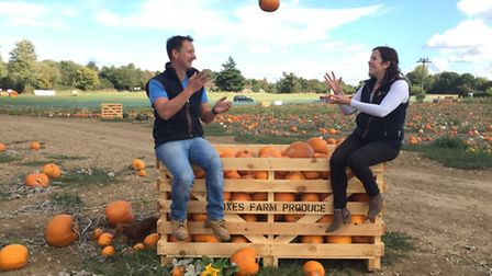 Pumpkins at Foxes Farm Produce in Aldham, Colchester. Owners Emily and Gary French are pictured.