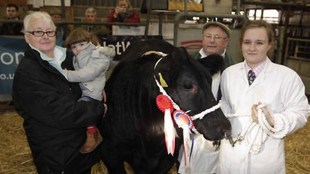 016 NB Stanford anual Christmas Prime Stock Show at Wyncolls Road, Colchester. Overall beef contest