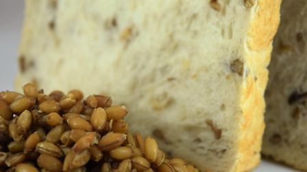 WholeSoft Sprouted bread.
