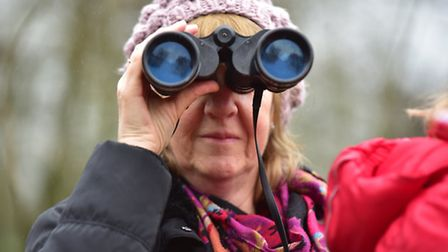The RSPB's big garden birdwatch is just one of many events taking place in Suffolk this weekend.