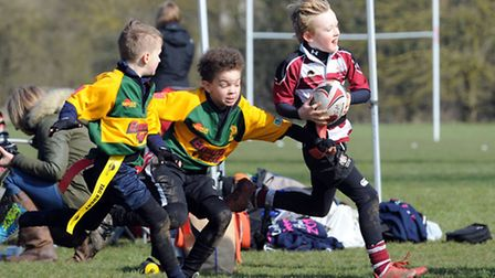 Players take part in the Tag Rugby festival at Hadleigh Rugby Club last season.
