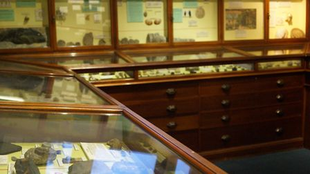 Geology exhibits at Chelmsford Museum