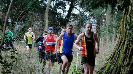 Running through the woods at Nowton Park during the recent Suffolk Winter League race