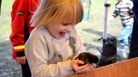 It's the Framlingham Country Show this weekend. Photo: Contributed