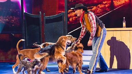 Britain's Got Talent finalist Dima and his dancing dogs will be making an appearance. Photo: Contrib