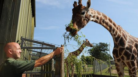Why not take a trip to Africa Alive this weekend? Picture: Lucy Taylor