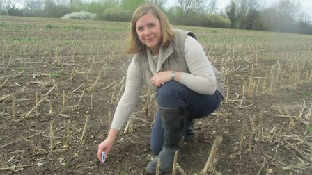 Lucy Smith-Reeve of Eye-based Grainseed Ltd testing soil temperature on a crop field to see whether