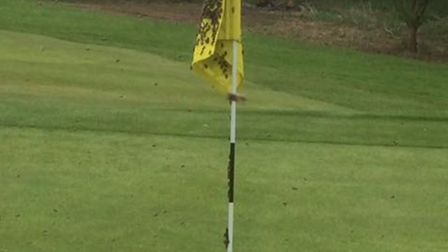 Bees had to be removed from the 18th green at Stowmarket on the evening before the Suffolk Amateur