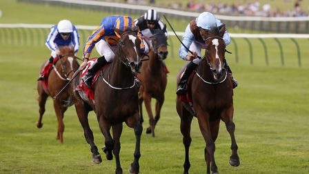Brave Anna (right) and Roly Poly renew their rivalry today