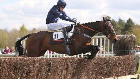Nightscape clears a fence at Higham