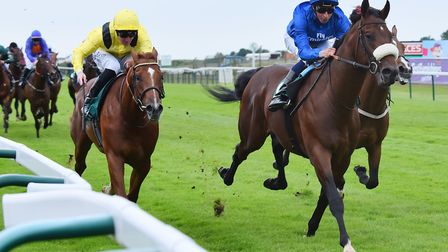 Salsabeel goes at Newmarket in the 2.55pm today