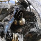 Earrings found as part of a collection of Roman treasure found under Williams & Griffin in Colcheste