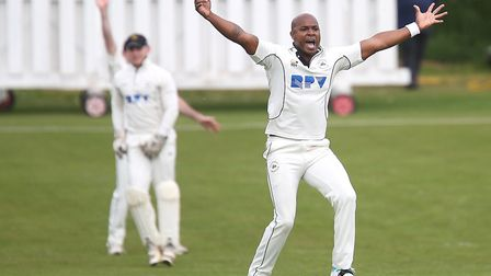 Tino Best celebrates taking one of his three wickets on his Mildenhall debut in the win over Vauxhal