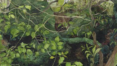 Moss and Leaves, Puzzlewood, 2016, part of Jelly Green's exhibition at the Alde Valley Spring Festi