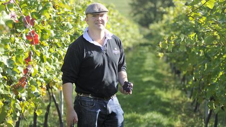Angus Crowther at Tuffon Hall Vineyard in Castle Hedingham