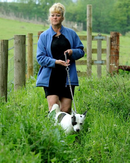 Battered and bruised: Carol Green and her dog Sky by the footpath and field at Great Yeldham where