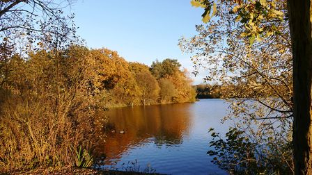 West Stow Lake. Picture: PAMELA BIDWELL