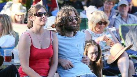 Fans enjoy the music at the StowBlues Festival. Picture GARY DONNISON.