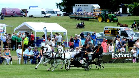 Sonme of the grand ring events at Euston Rural Pastimes. Picture: ANDY ABBOTT