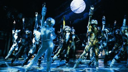 Cats by Andrew Lloyd Webber is one of the jewels in the West End theatre crown. But, for the West En