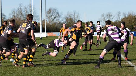 Ipswich Rugby Club, who play in amber and black.