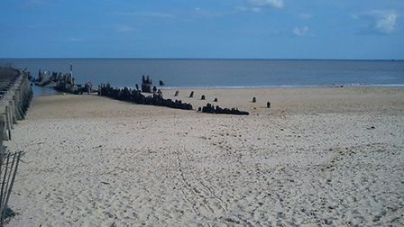 Let your dog run free on the beach at Walberswick. Picture: ARCHANT