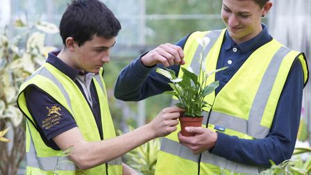 Writtle University College horticulture apprentices.