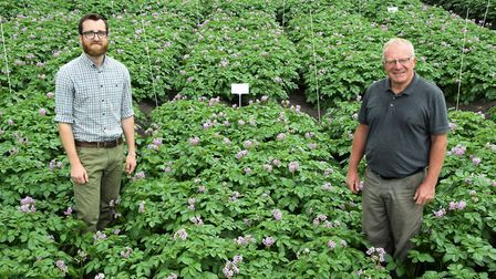 Agronomy firm Hutchinsons is running a series of trials at its new Fenland potato demonstration sit