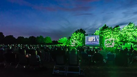 Watch The Rocky Horror Show at Essex's outdoor cinema. Picture: MUSIC ART STUDY