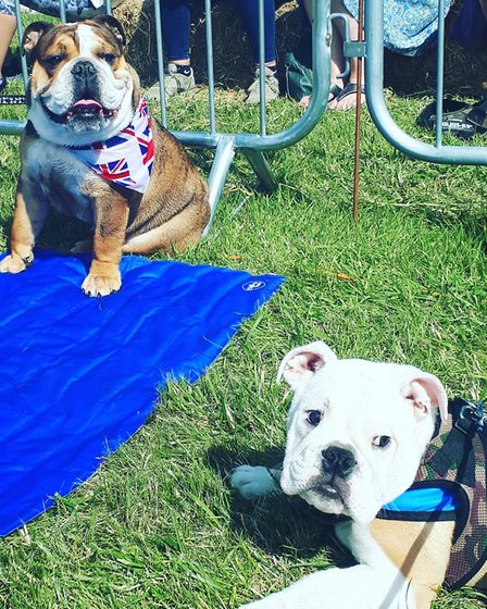 It doesn't get much cuter than this. Picture: GABBIE HAMMOND