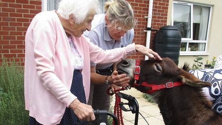 Olive, one of the residents at Glastonbury Court care home in Bury St Edmunds, meets a miniature don