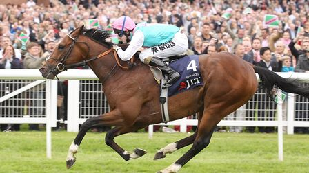 Frankel is based at Juddmonte Farms' Suffolk stables. Photo:David Davies/PA Wire.