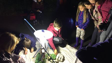 Youngsters discover moths attracted to a light during a moth evening organised by the Sudbury Watch
