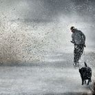 Suffolk and north Essex will be hit with winds of up to 55MPH by the weekend, while highs of 80MPH c