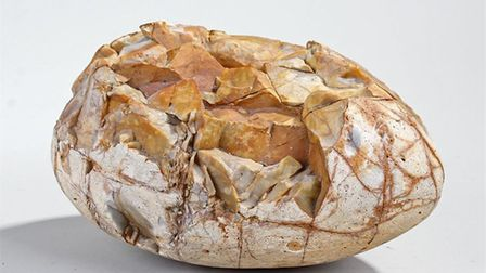 Lot 410: A rare dinosaur egg found on the Suffolk coast. Picture: BISHOP AND MILLER