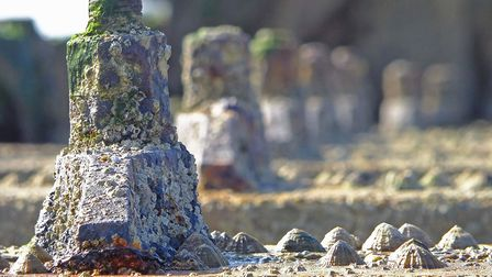Like castles defending the shore - Stephen Squirrell's close up captures the decay of defences while