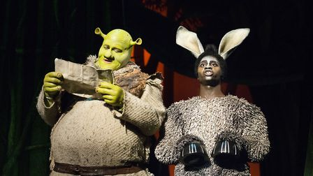 A scene from Shrek the Musical when it was staged in Norwich in 2014