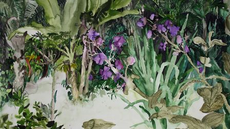 'Beyond the Tibouchina Plant' watercolour on paper 57 x 75cm (2015). Picture JELLY GREEN