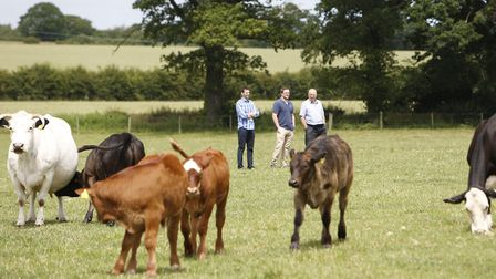 Choose Palfrey & Hall for local, fresh meat, eggs and milk. PICTURE: Palfrey & Hall